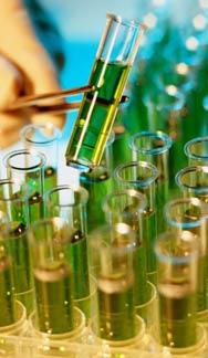 Клинический анализ мочи