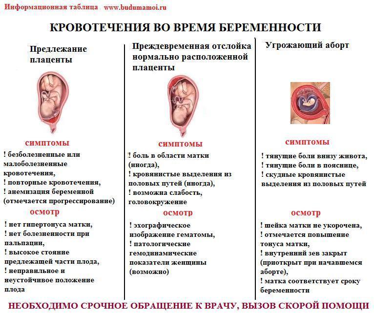 От чего во время раннего срока беременности кровь